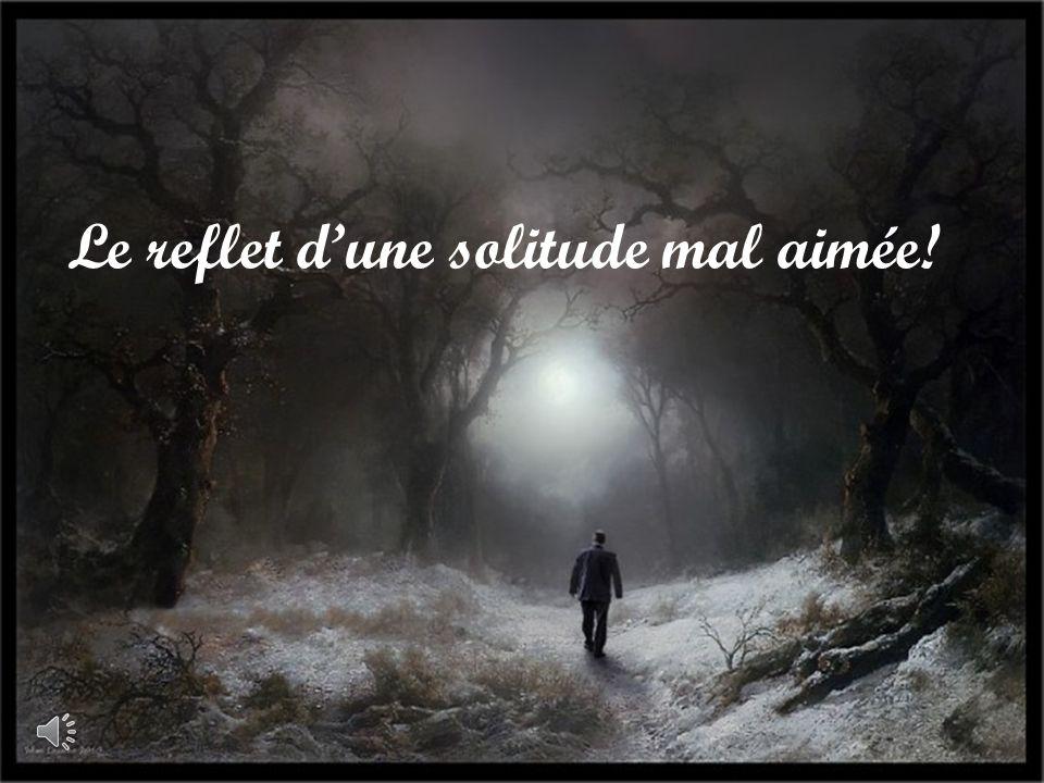 Le reflet dune solitude mal aimée!