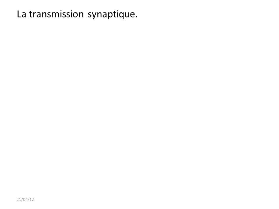 6 II- Elaboration de la perception visuelle.