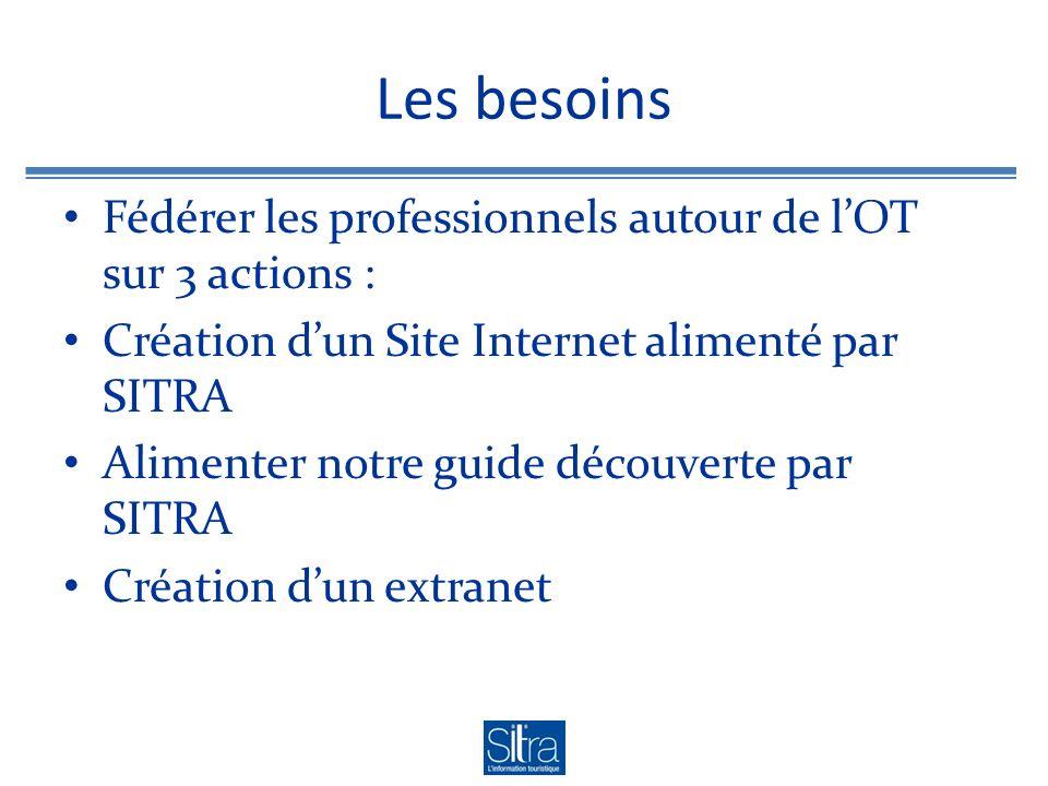 Les besoins Fédérer les professionnels autour de lOT sur 3 actions : Création dun Site Internet alimenté par SITRA Alimenter notre guide découverte pa