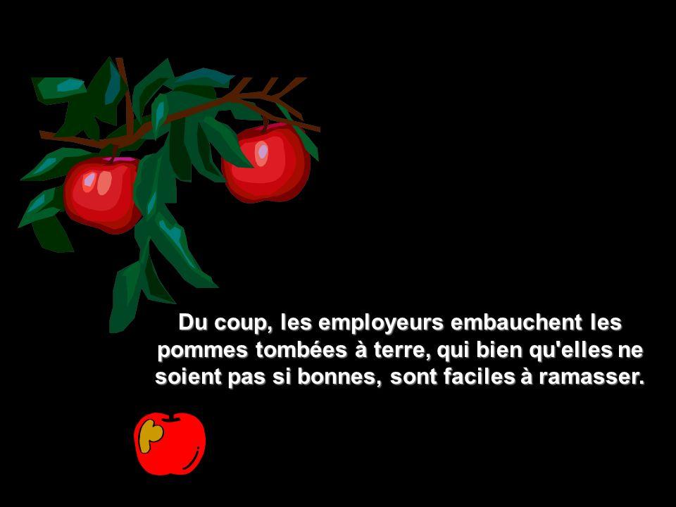Du coup, les employeurs embauchent les pommes tombées à terre, qui bien qu elles ne soient pas si bonnes, sont faciles à ramasser.