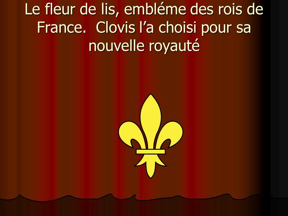 Le fleur de lis, embléme des rois de France. Clovis la choisi pour sa nouvelle royauté