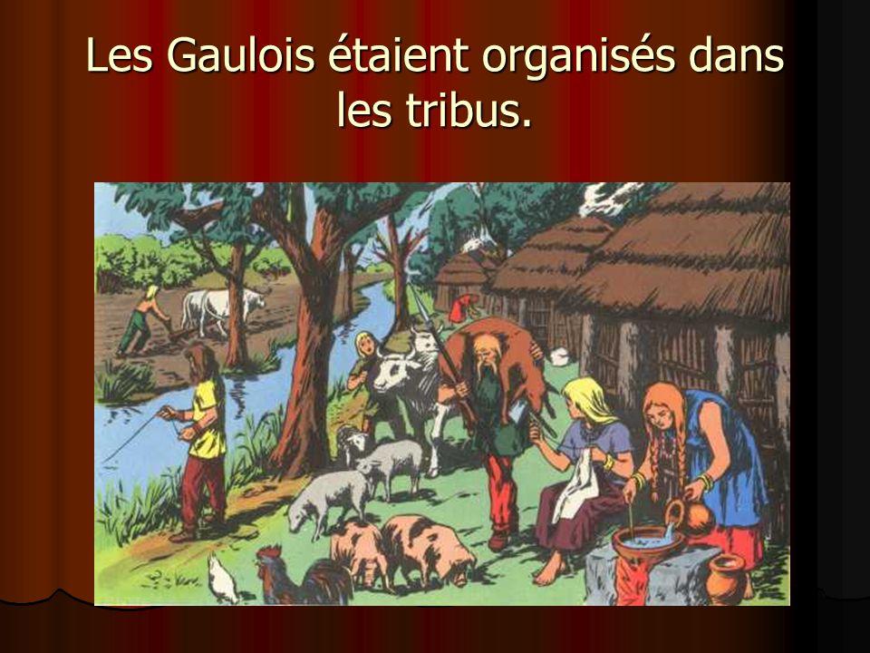 Les Gaulois étaient organisés dans les tribus.