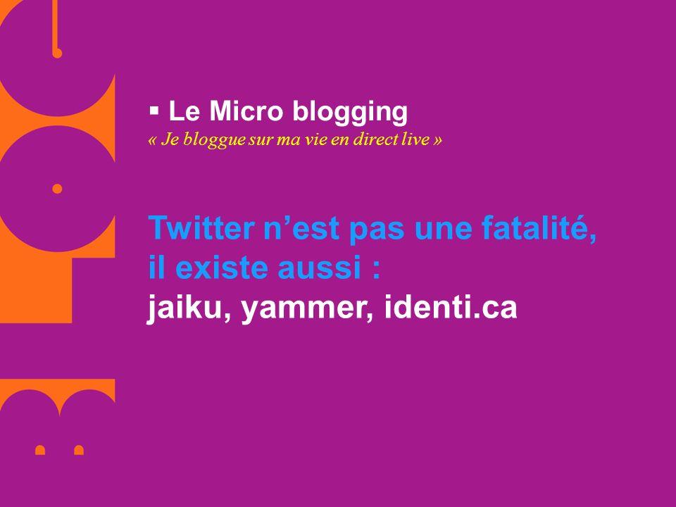 Le Micro blogging « Je bloggue sur ma vie en direct live » Twitter nest pas une fatalité, il existe aussi : jaiku, yammer, identi.ca