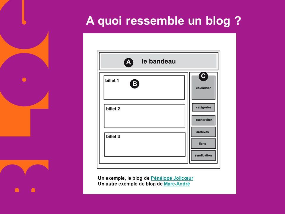 A quoi ressemble un blog ? Un exemple, le blog de Pénélope Jolicœur Un autre exemple de blog de Marc-AndréPénélope Jolicœur Marc-André