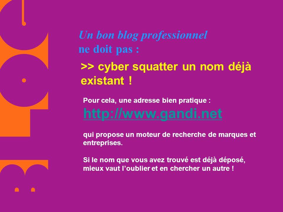 Un bon blog professionnel ne doit pas : >> cyber squatter un nom déjà existant ! Pour cela, une adresse bien pratique : http://www.gandi.net qui propo