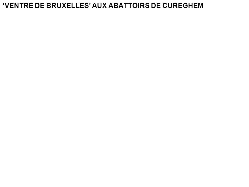 VENTRE DE BRUXELLES AUX ABATTOIRS DE CUREGHEM