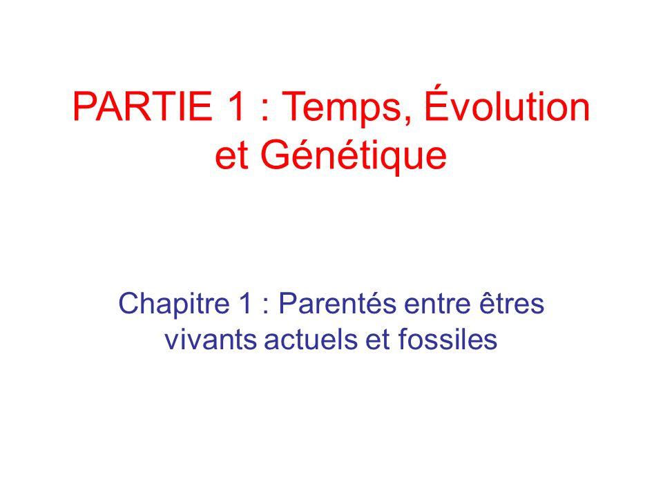 PARTIE 1 : Temps, Évolution et Génétique Chapitre 1 : Parentés entre êtres vivants actuels et fossiles
