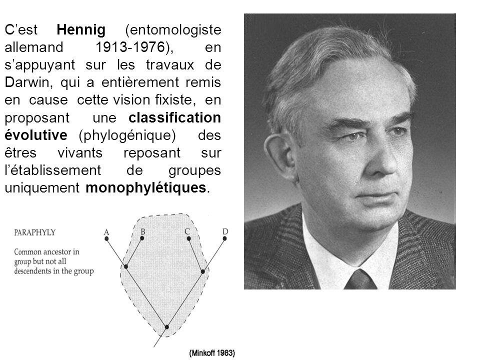 Cest Hennig (entomologiste allemand 1913-1976), en sappuyant sur les travaux de Darwin, qui a entièrement remis en cause cette vision fixiste, en prop