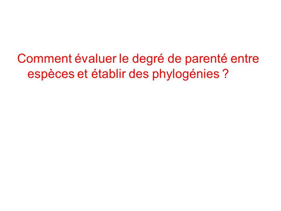 Comment évaluer le degré de parenté entre espèces et établir des phylogénies ?