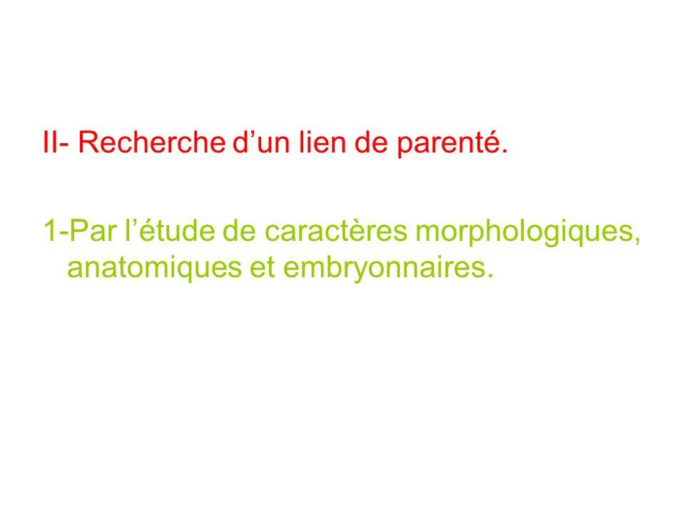 II- Recherche dun lien de parenté. 1-Par létude de caractères morphologiques, anatomiques et embryonnaires.