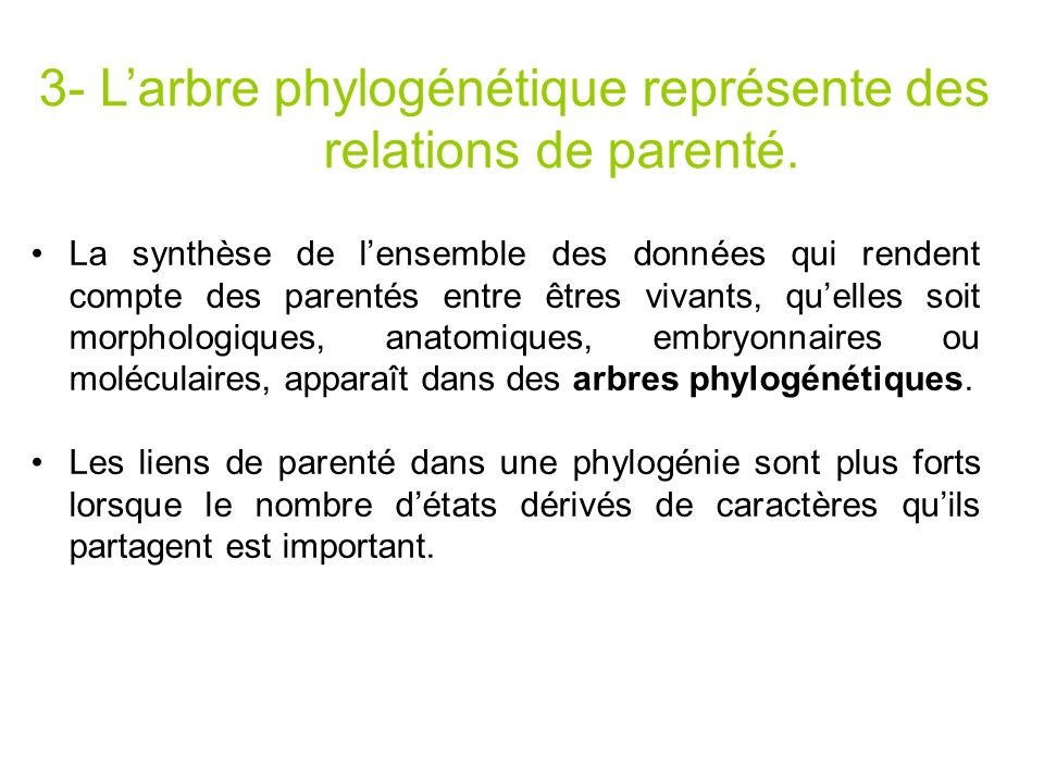 3- Larbre phylogénétique représente des relations de parenté. La synthèse de lensemble des données qui rendent compte des parentés entre êtres vivants