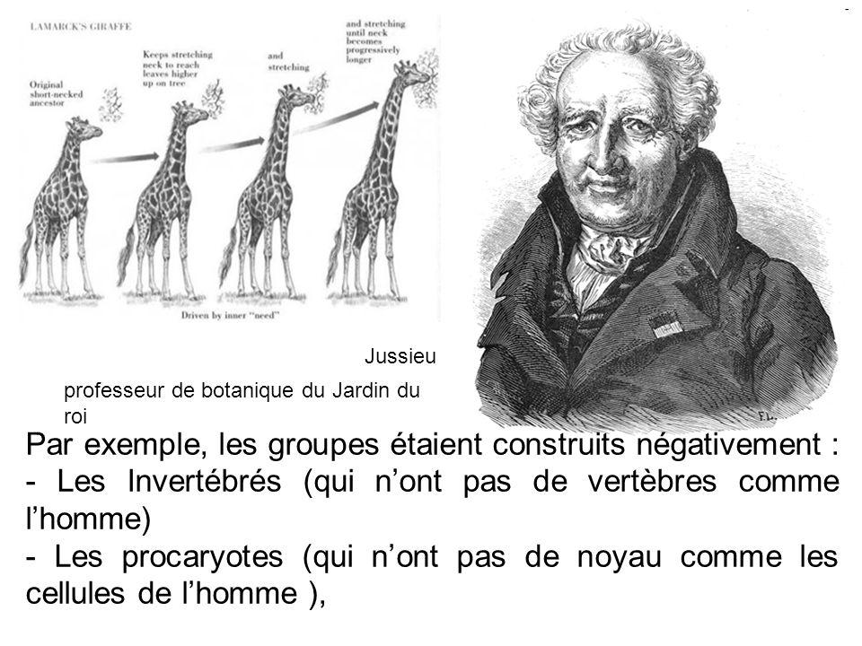 Jussieu Par exemple, les groupes étaient construits négativement : - Les Invertébrés (qui nont pas de vertèbres comme lhomme) - Les procaryotes (qui n