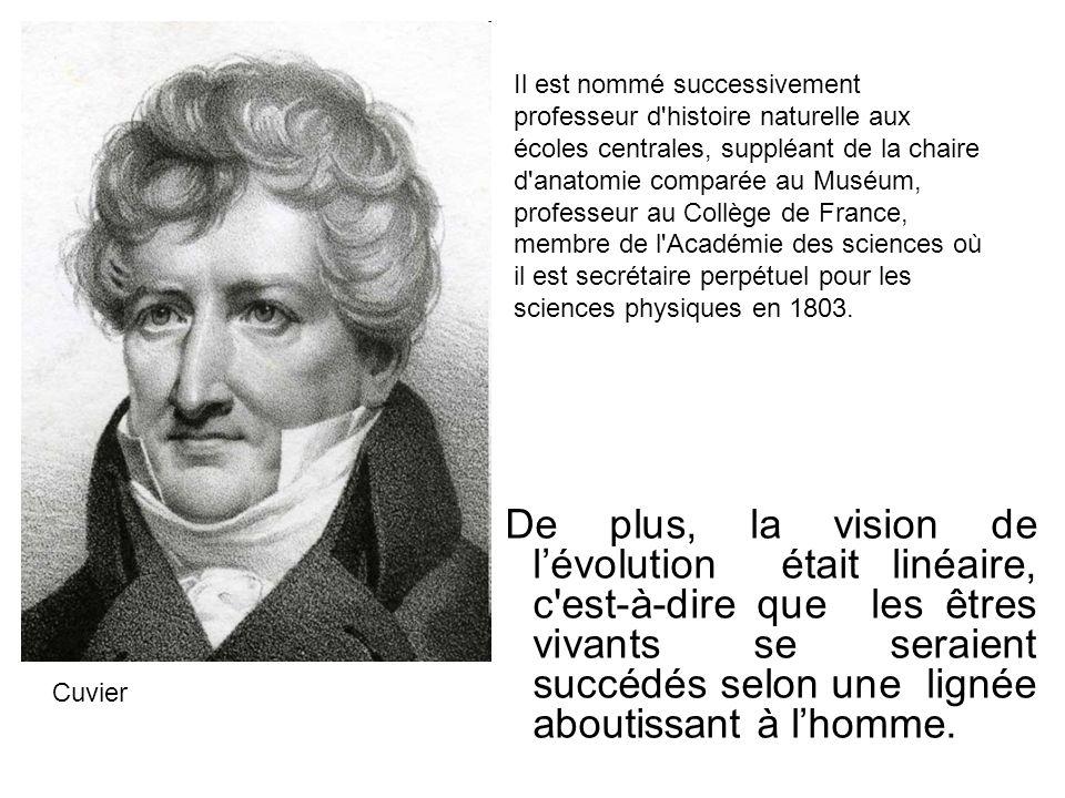 De plus, la vision de lévolution était linéaire, c'est-à-dire que les êtres vivants se seraient succédés selon une lignée aboutissant à lhomme. Cuvier
