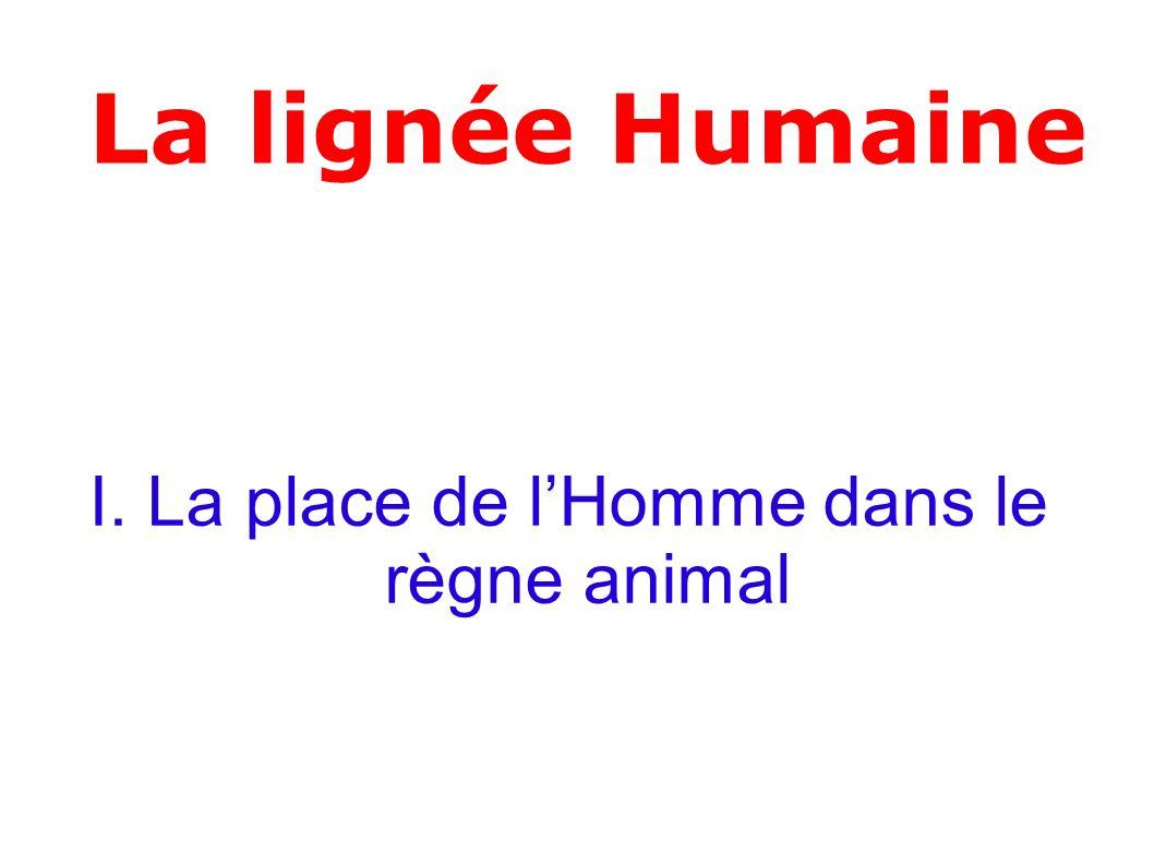 Pour chacun des mots suivants, donner une courte définition LHomme est -un eucaryote, -un vertébré, -un tétrapode, -un amniote, -un mammifère, -un primate, -un hominoïde, -un hominidé, -un homininé