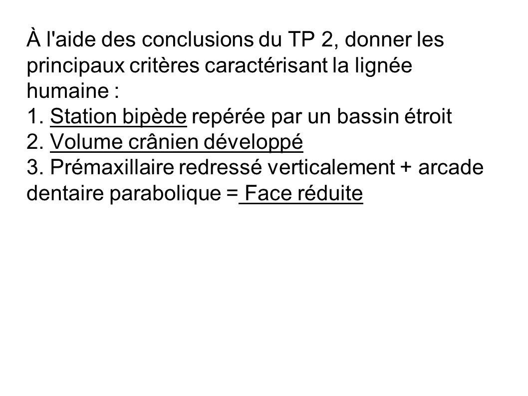 À l'aide des conclusions du TP 2, donner les principaux critères caractérisant la lignée humaine : 1. Station bipède repérée par un bassin étroit 2. V