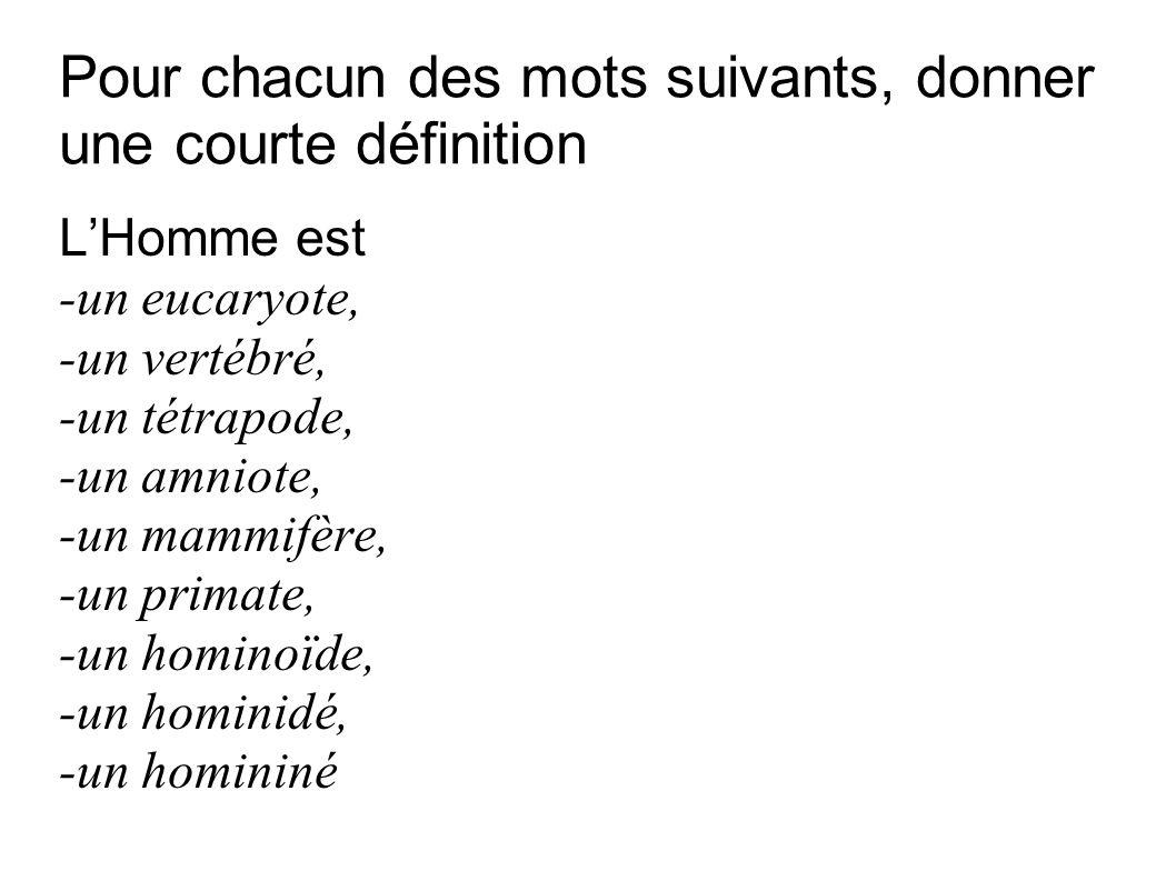 Pour chacun des mots suivants, donner une courte définition LHomme est -un eucaryote, -un vertébré, -un tétrapode, -un amniote, -un mammifère, -un pri
