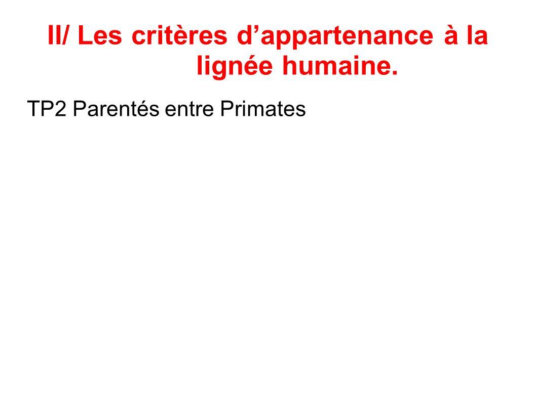 II/ Les critères dappartenance à la lignée humaine. TP2 Parentés entre Primates