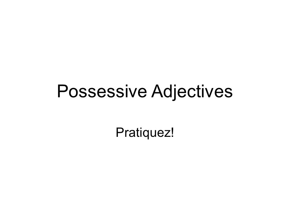 Possessive Adjectives Pratiquez!