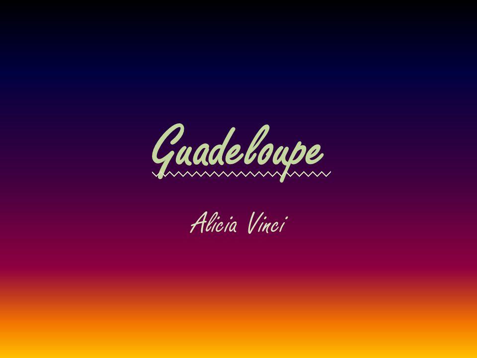 Guadeloupe Alicia Vinci