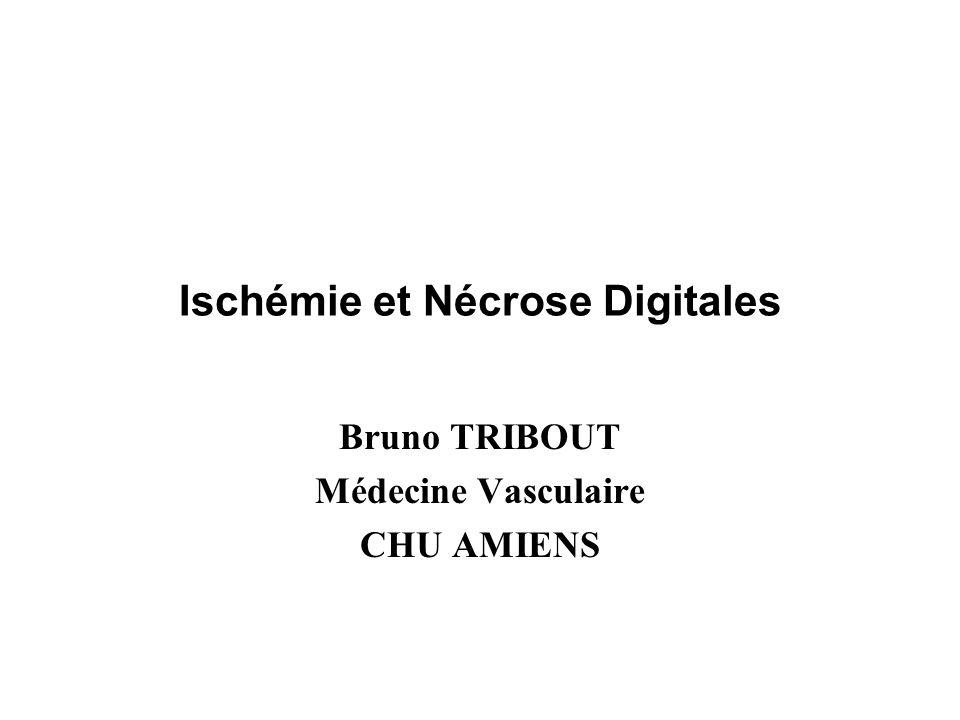 Ischémie et Nécrose Digitales Bruno TRIBOUT Médecine Vasculaire CHU AMIENS