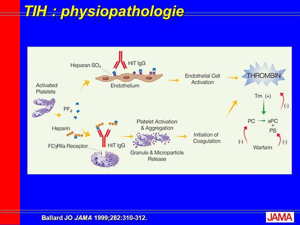 TIH : physiopathologie Ballard JO JAMA 1999;282:310-312.