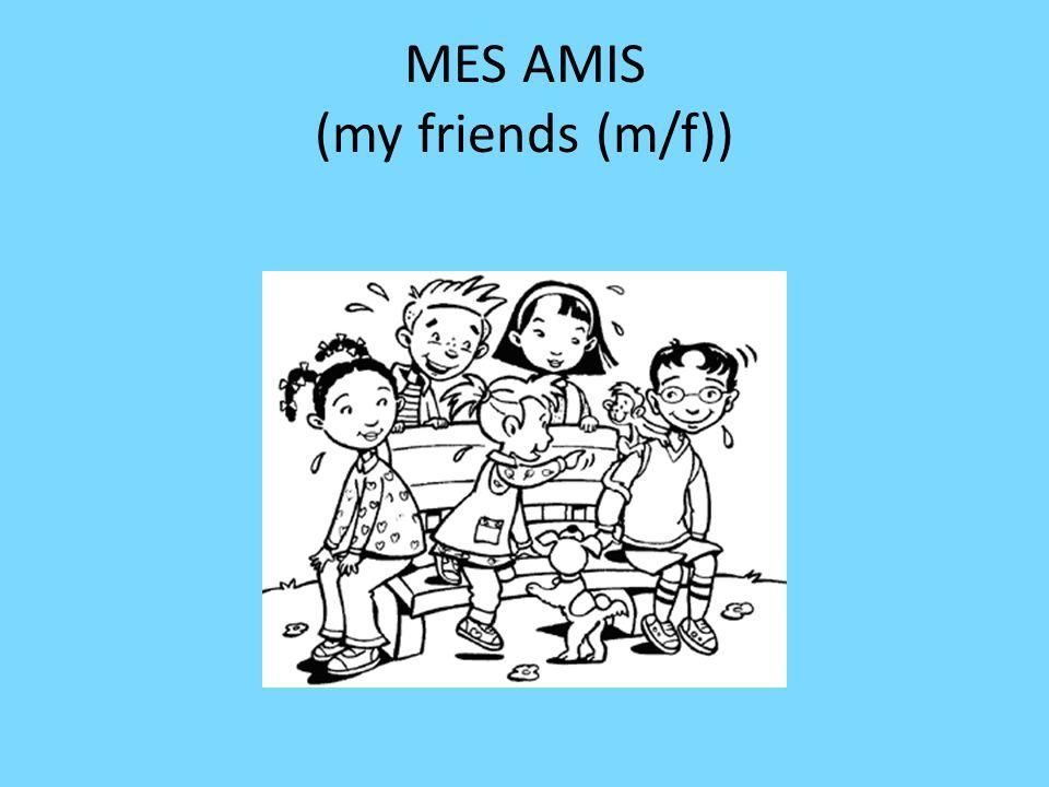 MES AMIS (my friends (m/f))