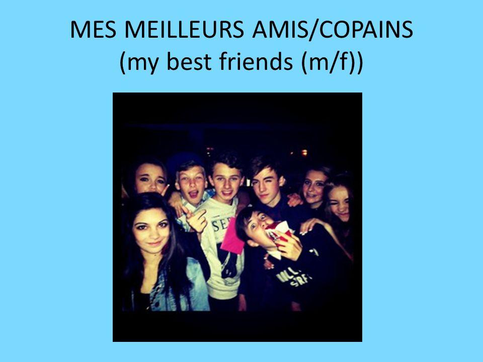 MES MEILLEURS AMIS/COPAINS (my best friends (m/f))