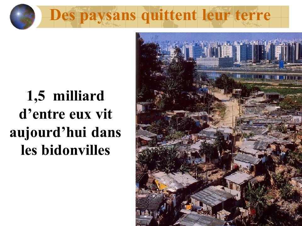 Des paysans quittent leur terre 1,5 milliard dentre eux vit aujourdhui dans les bidonvilles