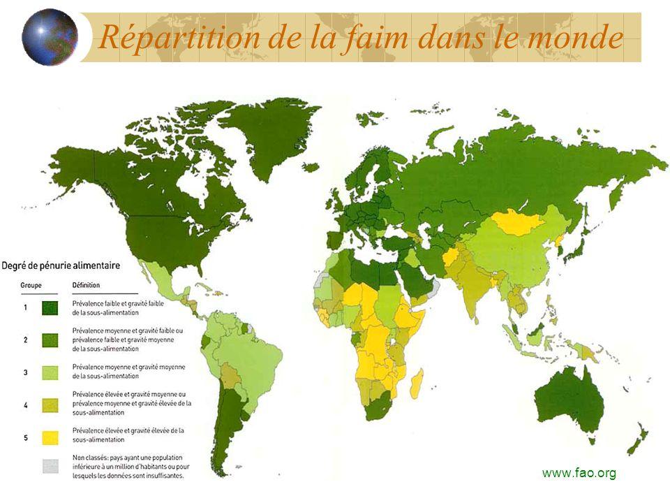 Répartition de la faim dans le monde www.fao.org