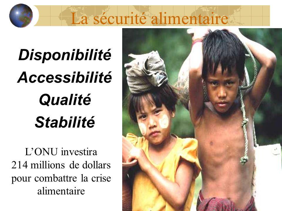 La sécurité alimentaire Disponibilité Accessibilité Qualité Stabilité LONU investira 214 millions de dollars pour combattre la crise alimentaire