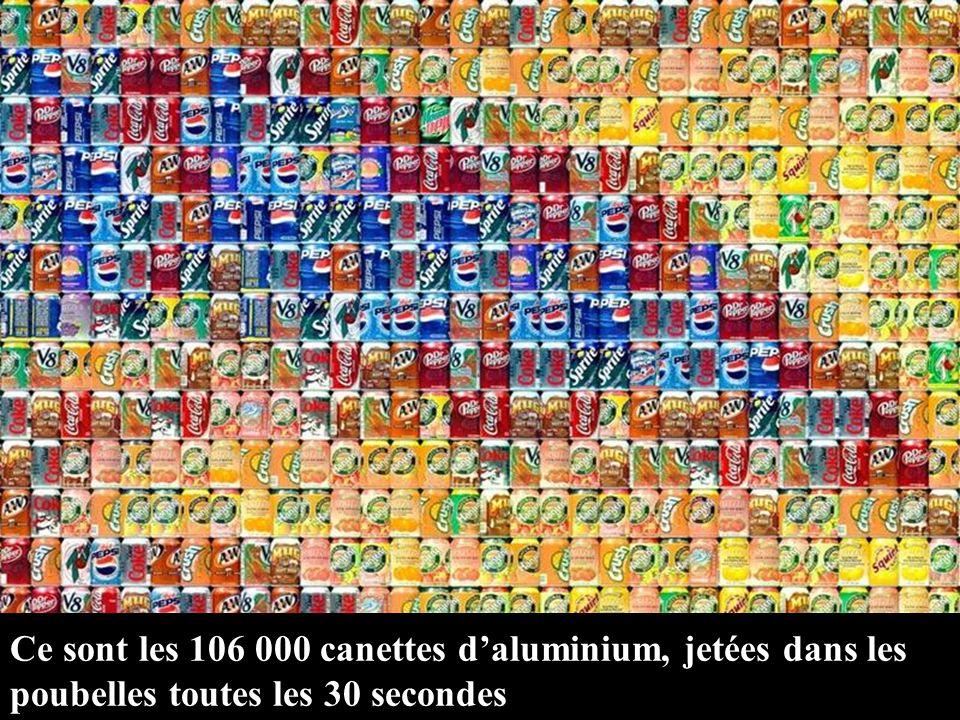 Ce sont les 106 000 canettes daluminium, jetées dans les poubelles toutes les 30 secondes