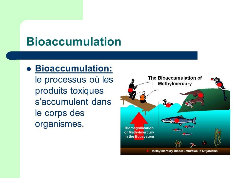 Bioaccumulation Bioaccumulation: le processus où les produits toxiques saccumulent dans le corps des organismes.