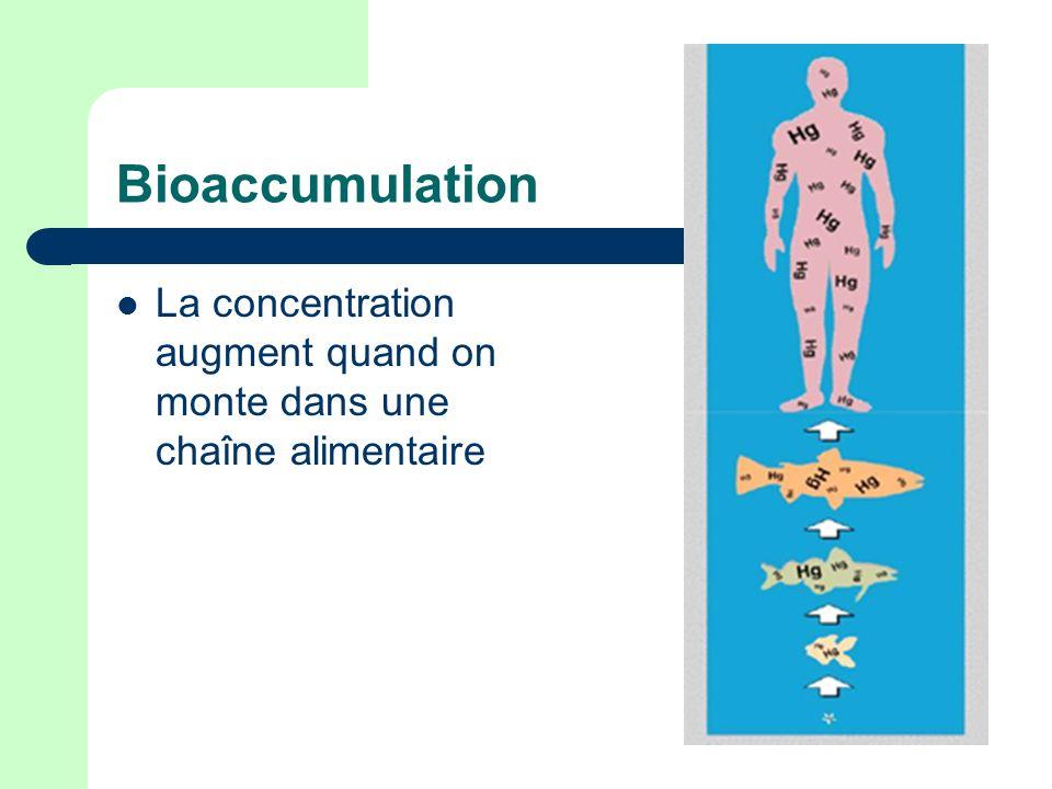 Bioaccumulation La concentration augment quand on monte dans une chaîne alimentaire