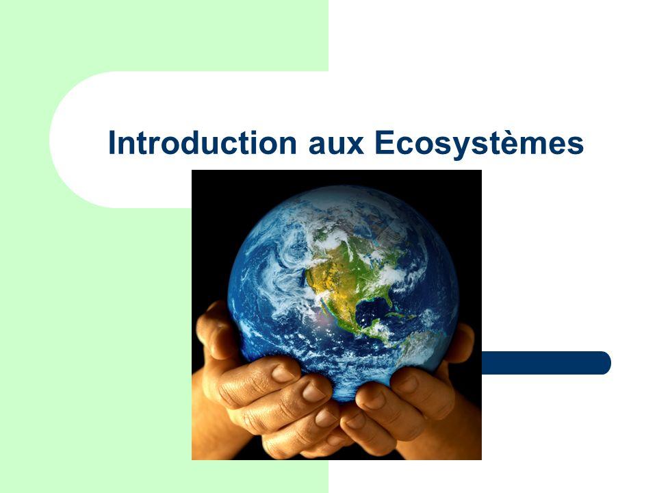 Introduction aux Ecosystèmes