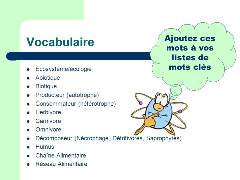 Vocabulaire Écosystème/écologie Abiotique Biotique Producteur (autotrophe) Consommateur (hétérotrophe) Herbivore Carnivore Omnivore Décomposeur (Nécrophage, Détritivores, Saprophytes) Humus Chaîne Alimentaire Réseau Alimentaire Ajoutez ces mots à vos listes de mots clés