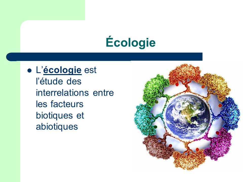 Qu est-ce que c est un écosystème.