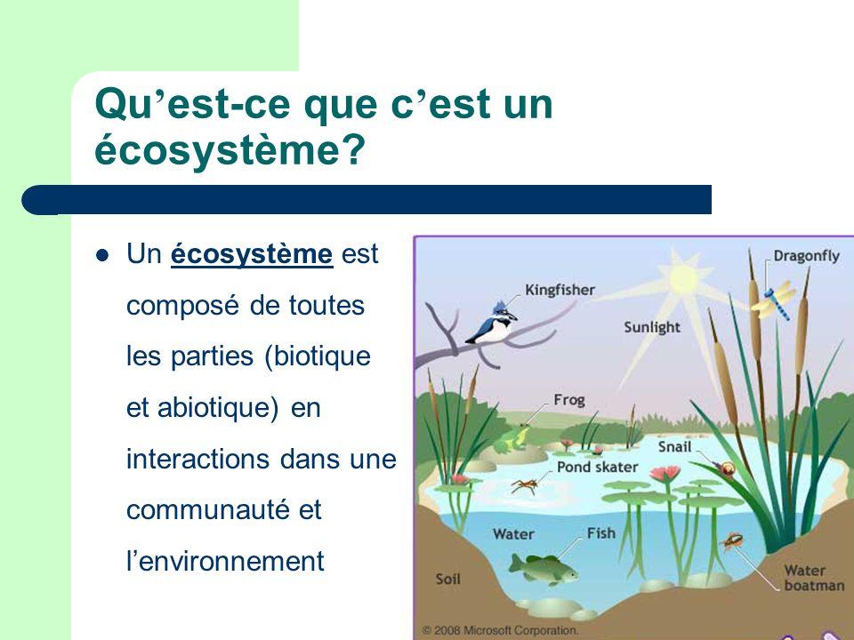Qu est-ce que c est un écosystème? Un écosystème est composé de toutes les parties (biotique et abiotique) en interactions dans une communauté et lenv