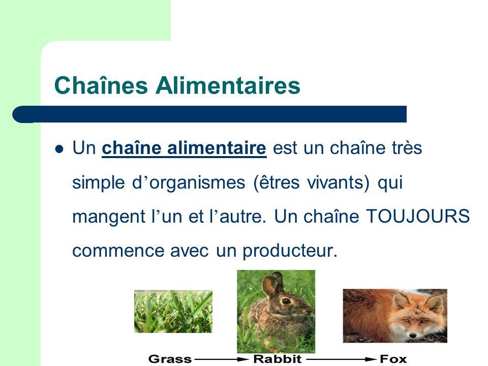 Chaînes Alimentaires Un chaîne alimentaire est un chaîne très simple d organismes (êtres vivants) qui mangent l un et l autre. Un chaîne TOUJOURS comm