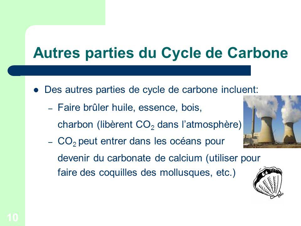 10 Autres parties du Cycle de Carbone Des autres parties de cycle de carbone incluent: – Faire brûler huile, essence, bois, charbon (libèrent CO 2 dan