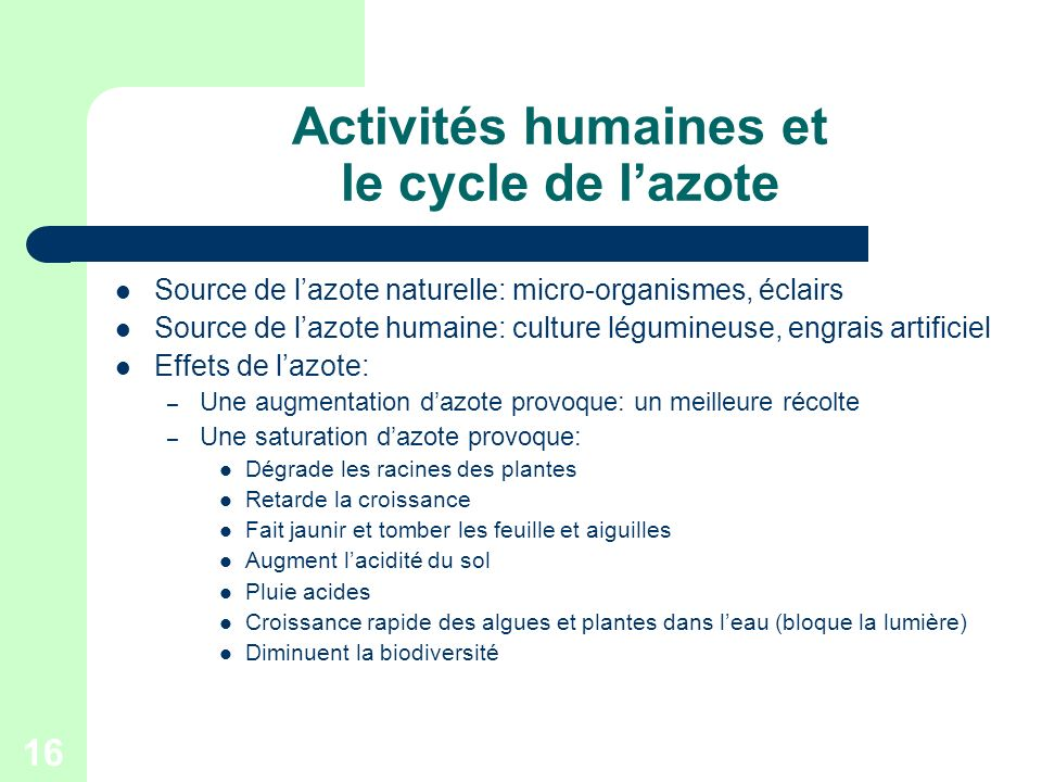 16 Activités humaines et le cycle de lazote Source de lazote naturelle: micro-organismes, éclairs Source de lazote humaine: culture légumineuse, engra