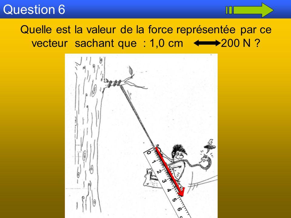 Question 6 Quelle est la valeur de la force représentée par ce vecteur sachant que : 1,0 cm 200 N ?
