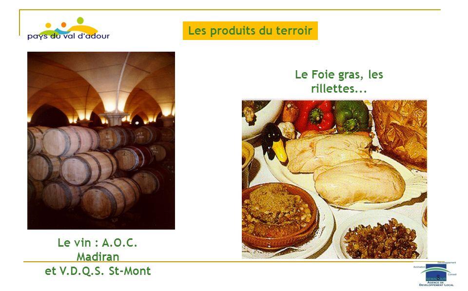 Le vin : A.O.C. Madiran et V.D.Q.S. St-Mont Le Foie gras, les rillettes... Les produits du terroir 8