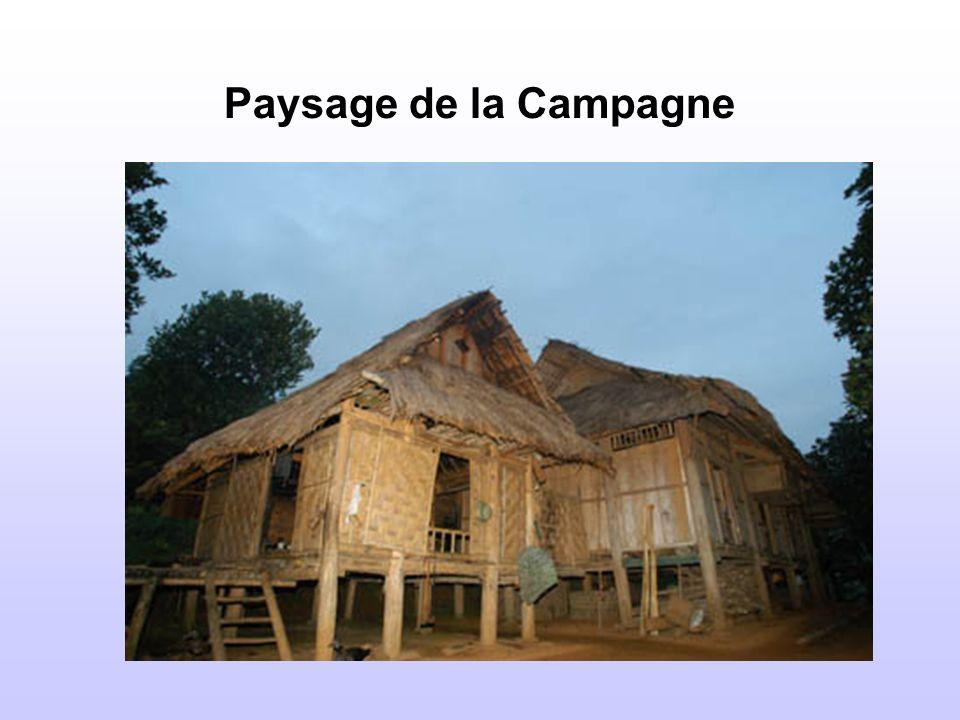 Paysage de la Campagne
