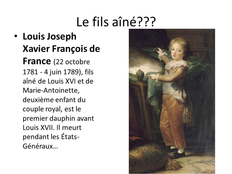 Le fils aîné??? Louis Joseph Xavier François de France (22 octobre 1781 - 4 juin 1789), fils aîné de Louis XVI et de Marie-Antoinette, deuxième enfant