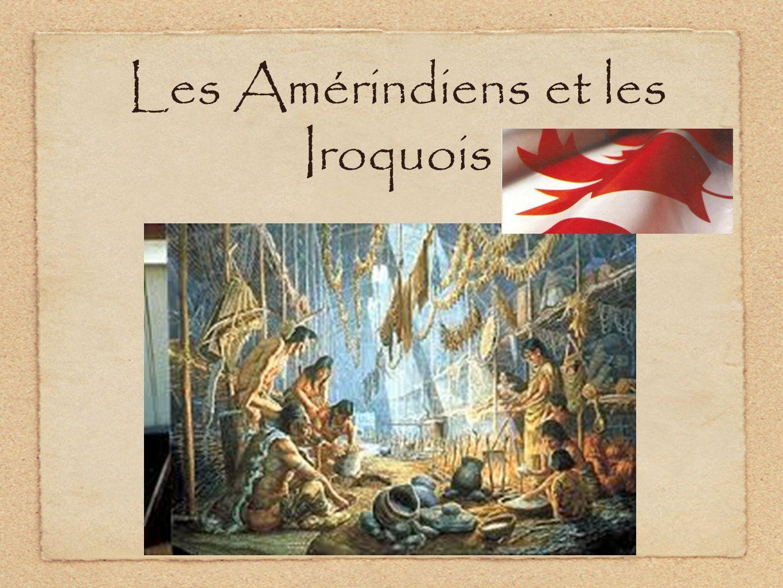 Lorganisation sociale des tribus iroquoises La structure sociale était très claire : PEUPLE = 12 à 20 TRIBUS, TRIBU = 4 à 10 VILLAGES, VILLAGE = 2 à 5 CLANS, Clan = 1-5 MAISONNEES.