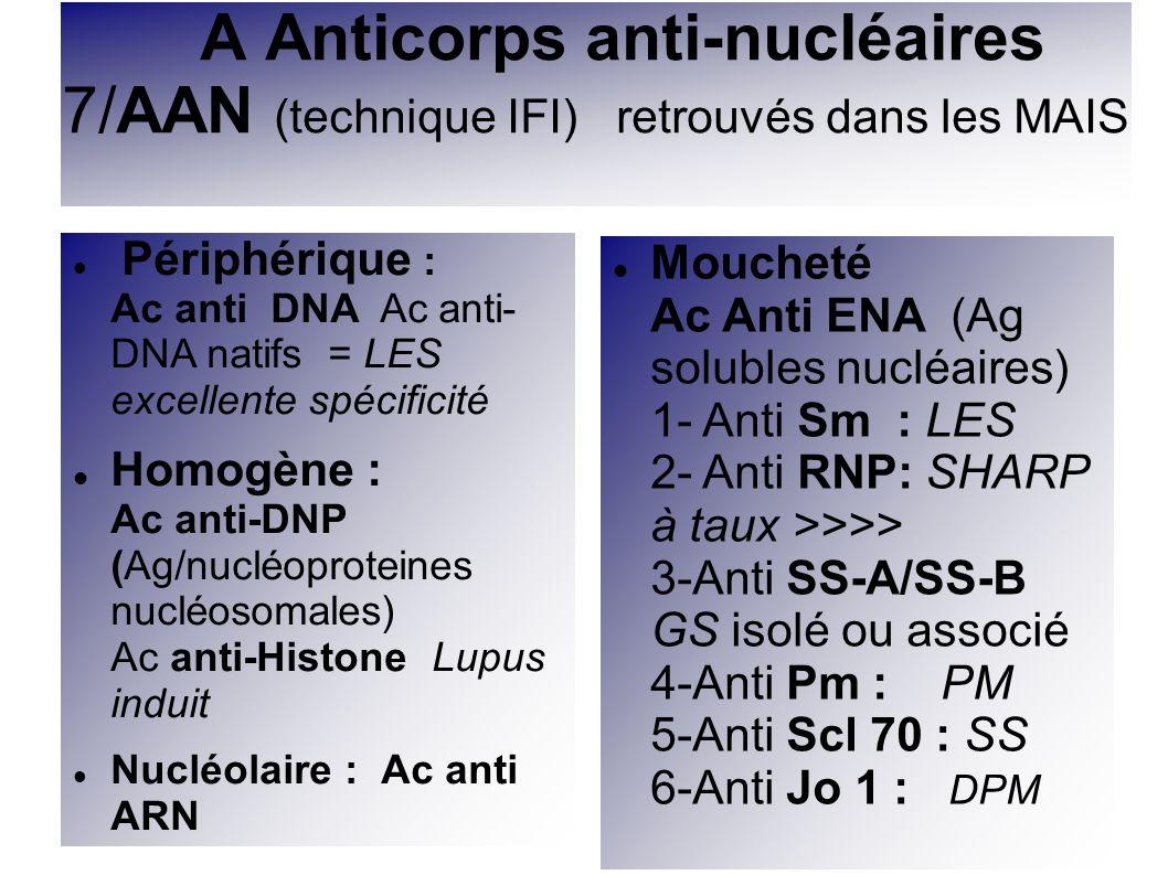 A Anticorps anti-nucléaires 7/AAN (technique IFI) retrouvés dans les MAIS Périphérique : Ac anti DNA Ac anti- DNA natifs = LES excellente spécificité