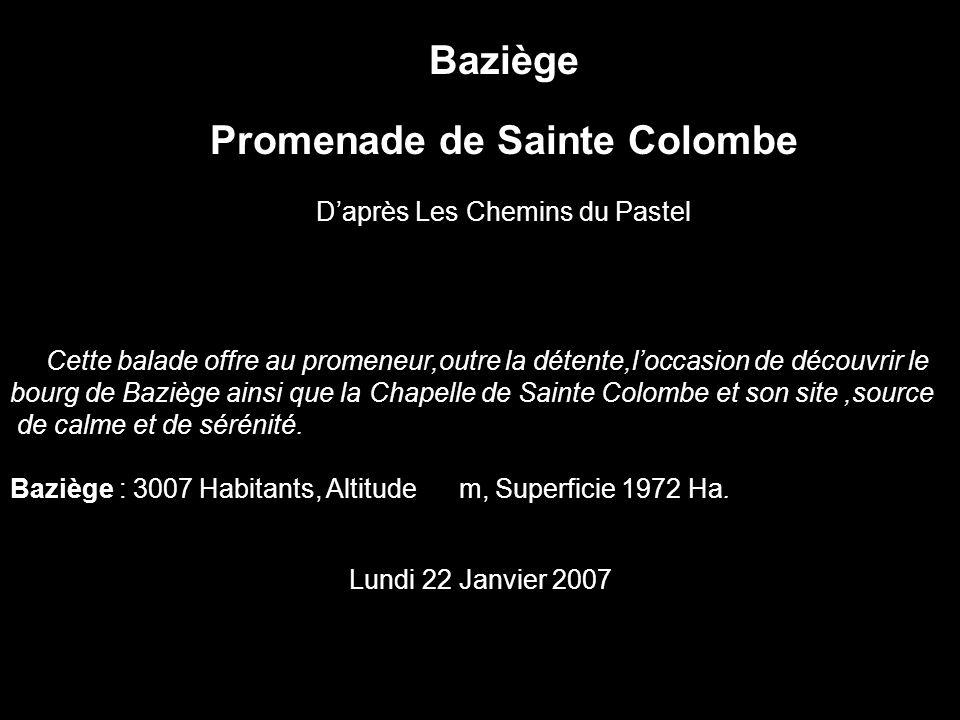 Baziège Promenade de Sainte Colombe Daprès Les Chemins du Pastel Cette balade offre au promeneur,outre la détente,loccasion de découvrir le bourg de B