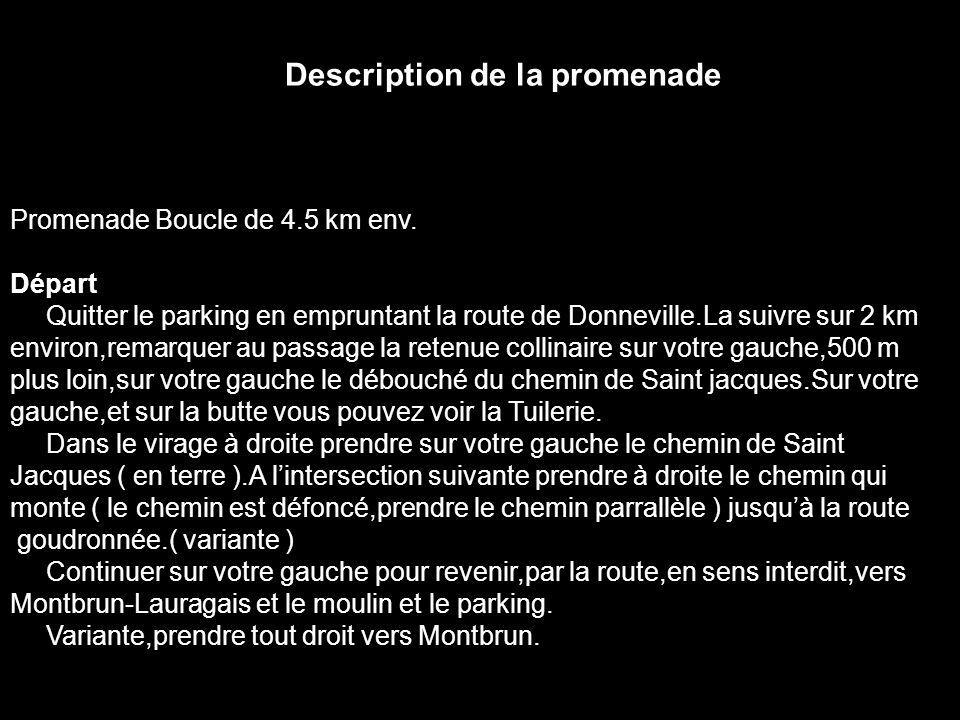 Patrimoine et Histoire Le 8 août 1983, date de la visite, le moulin dit du Marquis de Passelègue à Montbrun, en Haute-Garonne, avait triste mine : sa calotte et sa charpente n étaient plus, à l exception de l avancée en forme de bâtière protégeant l avant de l arbre.