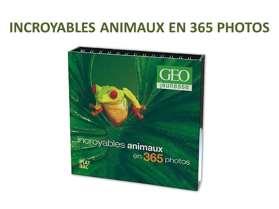 INCROYABLES ANIMAUX EN 365 PHOTOS