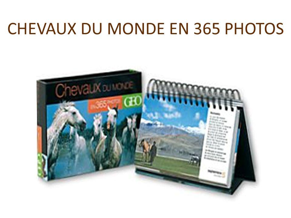 CHEVAUX DU MONDE EN 365 PHOTOS